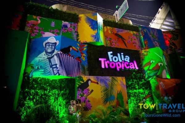 rio carnival vip box