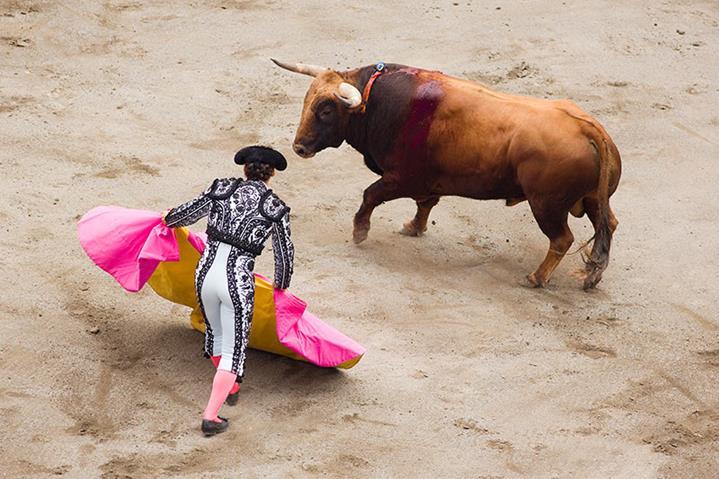 Pamplona Bull Fights
