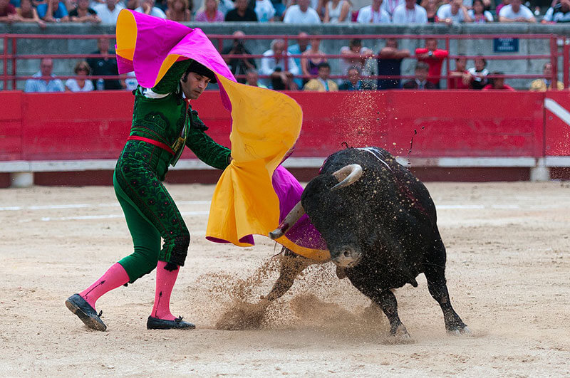 Pamplona Bull Fights