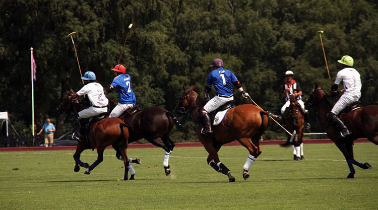 polo in buenos aires